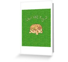 What ARE Frogs? (Desert Rain edition) Greeting Card