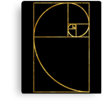 Golden Ratio Sacred Fibonacci Spiral Canvas Print