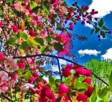 Bright and Vivid Blossoms Against Blue Sky Sticker