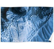 Morning Sunbeam on a Blue Nightgown Poster