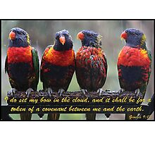 Genesis 9:13 with Lorikeets Photographic Print
