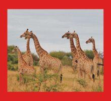 Giraffe Humor - African Wildlife - Amazing Stare One Piece - Short Sleeve