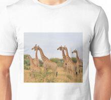 Giraffe Humor - African Wildlife - Amazing Stare Unisex T-Shirt