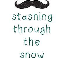 Stashing Through The Snow by Leah Price