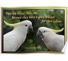 Ecclesiastes 4:9 - Partnership Poster