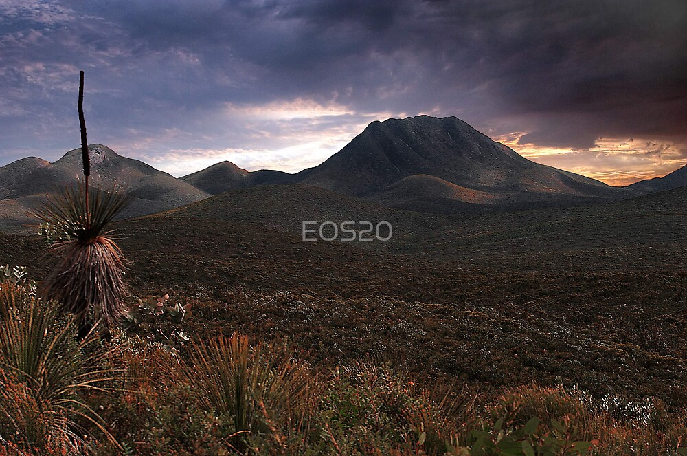 Moody Morning  by EOS20