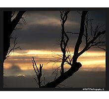Outback Sunset - Raymond Terrace, Nsw Photographic Print