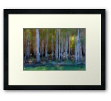 Donuts Abstract 24 Framed Print