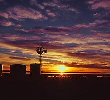 Windmill Sunrise by Neil