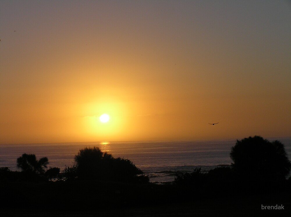 Sunrise over Bear Gully by brendak