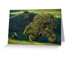 gum tree Greeting Card