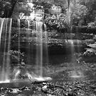 Russell Falls, Tasmania by John  Cuthbertson | www.johncuthbertson.com