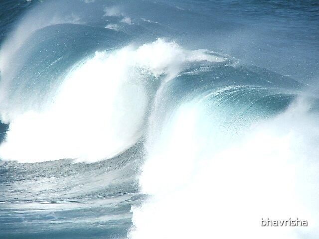 surfs up by bhavrisha
