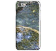 Renfrew Ravine - grass jam iPhone Case/Skin