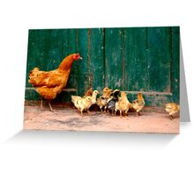 Mother Hen and Chicks Greeting Card