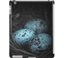 Nest of 3 iPad Case/Skin
