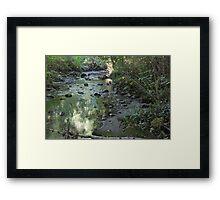 Renfrew Ravine - green pond Framed Print