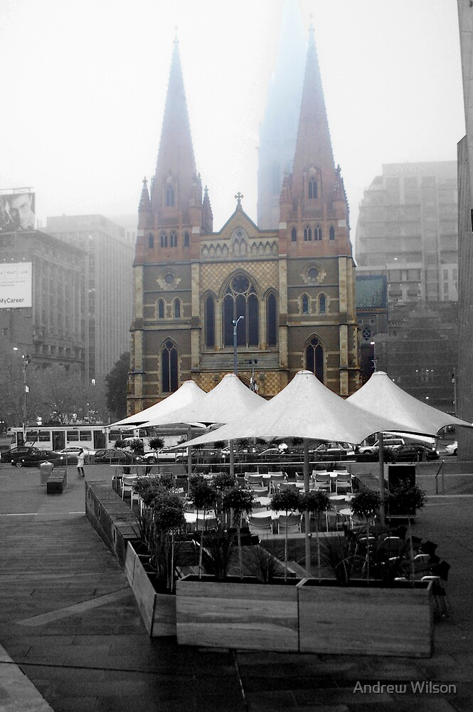 Federation square and St Pauls  by Andrew Wilson