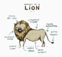 Anatomy of a Lion Kids Clothes