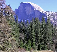 Yosemite Half-Dome by J K Scott