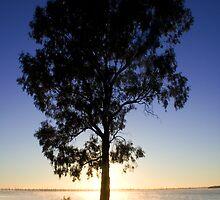 Sunrise on Lake Mulwala by Michael Eyssens