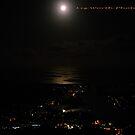 Moonlight Night by Liz Worth