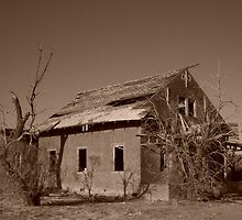 Fixer Upper by cphtaz