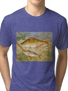 Dean Wolstenholme The Younger - An Anglers Catch Of Coarse Fish Ca. 1850 Tri-blend T-Shirt