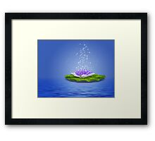 Water Lily 2 Framed Print