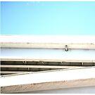 Open Skies by Dallas Maurer