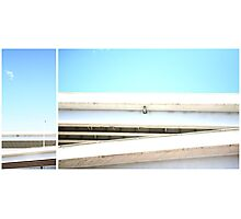 Open Skies Photographic Print