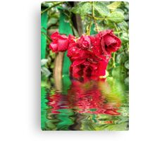 Wet red roses 4 Canvas Print