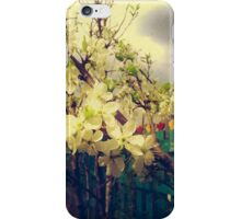 White Plum Blossoms 3 iPhone Case/Skin