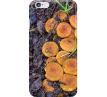 Small Shrooms and a tiny Snail............ iPhone Case/Skin