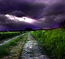 storm has passed by gashwen
