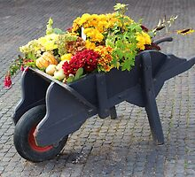 A Barrow Full of Autumn by Yampimon