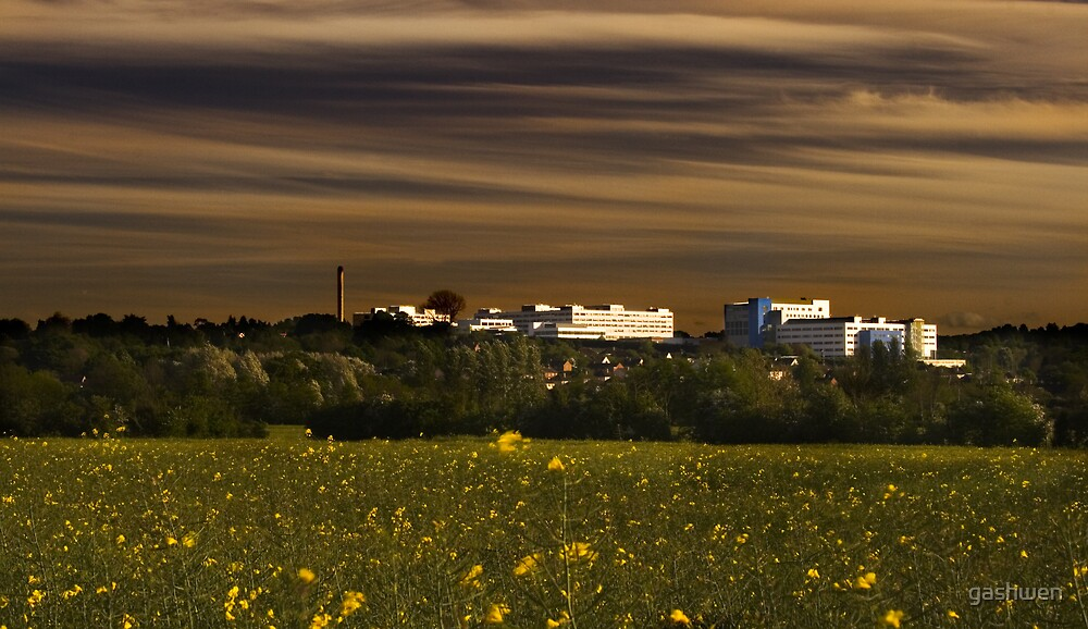The John Radcliffe Hospital by gashwen