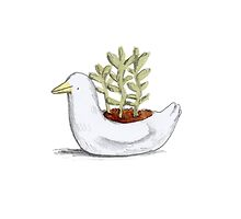 Succulent in Duck Planter by Sophie Corrigan