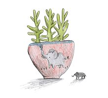 Succulent in Elephant Planter by Sophie Corrigan