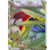Spring Treats iPad Case/Skin