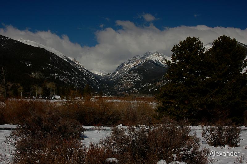 Mountain View by TJ Alexander