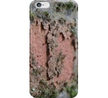 Decaying Wall iPhone Case/Skin