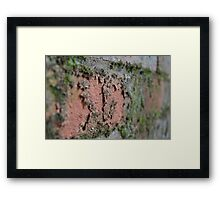 Decaying Wall Framed Print
