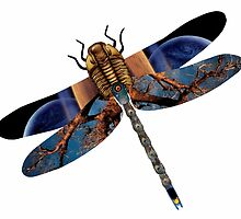 The Wise Odonata by Donuts