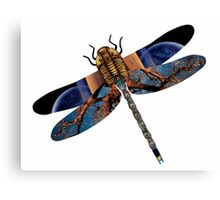 The Wise Odonata Canvas Print