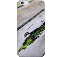 Mossy Park Bench iPhone Case/Skin