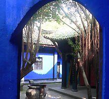 feeling blue by jan Robertson