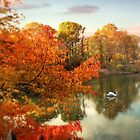 Autumn Splendor by Jessica Jenney