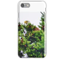 He Watches Over Me iPhone Case/Skin