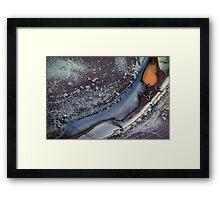 river frost Framed Print